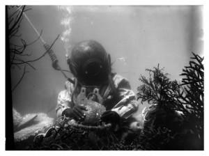fank hurley underwater